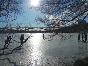 lake malaren in winter